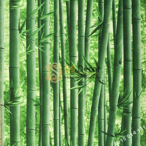 Giấy dán tường rừng tre xanh 3D159