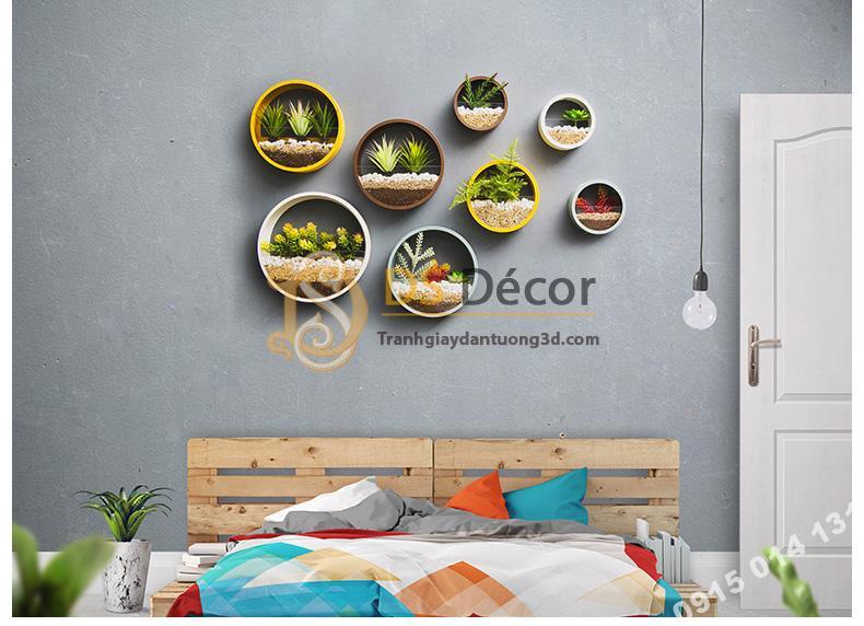Vòng tròn trồng hoa treo tường trang trí phòng ngủ DC03