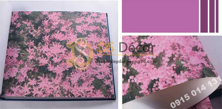 Bề mặt Giấy dán tương hoa osaka hồng 3D323